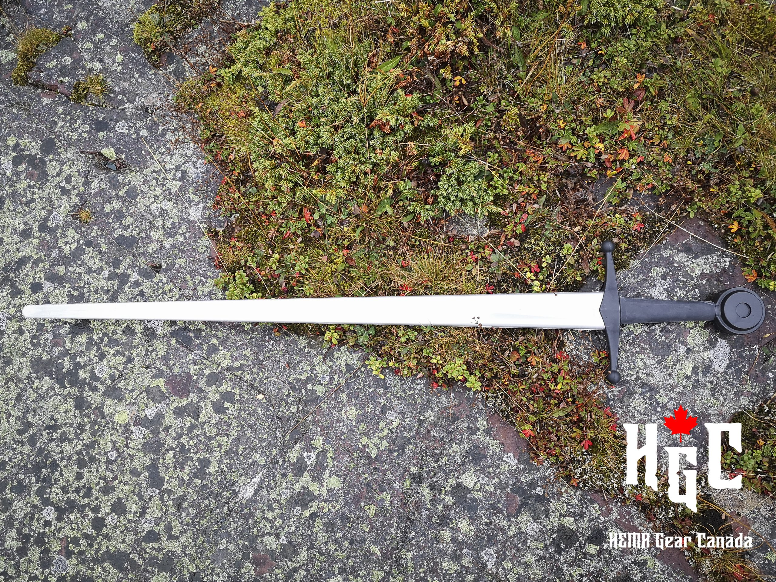 Red Dragon Arming Sword Synthetic Image